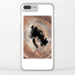 Wood Void Clear iPhone Case