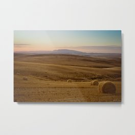 Wheat fields of the Overberg - Landscape Photography Metal Print