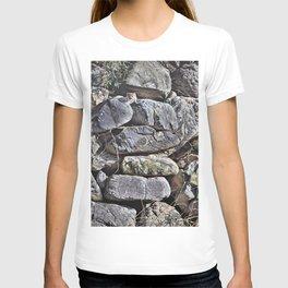 Peekaboo Stoat by Alan M Hunt T-shirt