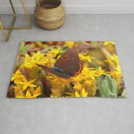 Butterfly 011 Rug