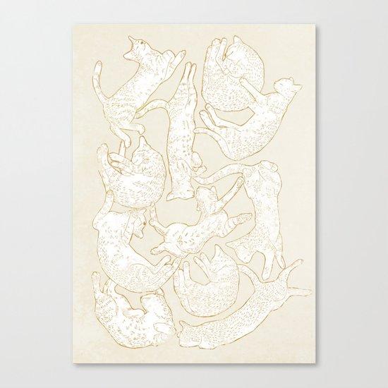 Eleven Sleepy Cat Canvas Print