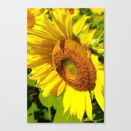 My Best Side Canvas Print