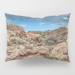 American Landscape Petrified Natonal Forest Pillow Sham