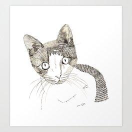 Humphrey the cat Art Print