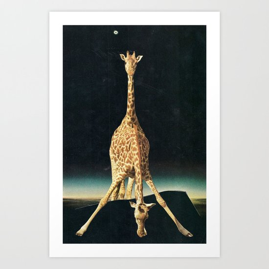 overview of giraffes Art Print