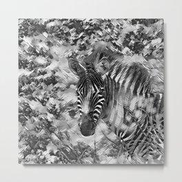 AnimalArtBW_Zebra_20170703_by_JAMColorsSpecial Metal Print