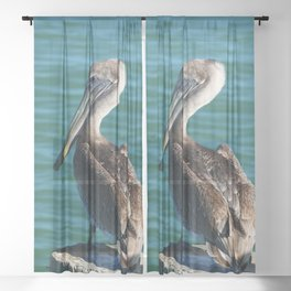 Pelican On A Pole Sheer Curtain