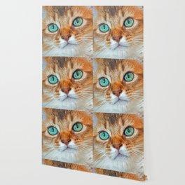 EYE CAT-CHING Wallpaper