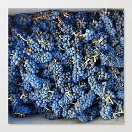 Wine Time Canvas Print