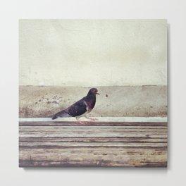 Bird Walk Metal Print