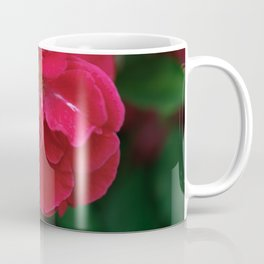 Red Red Roses... Coffee Mug