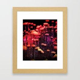 Dark Pixie Garden Framed Art Print