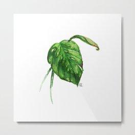A New Leaf Metal Print
