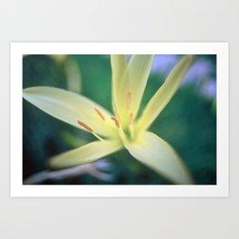 Macro Flower Art Print