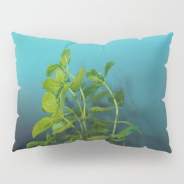 Shy and charming basil Pillow Sham