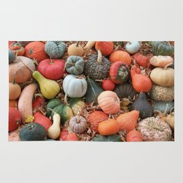cornucopia (heirloom pumpkins and squashes) Rug