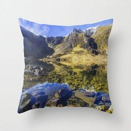 Lake at Dawn Throw Pillow