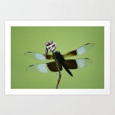 Dragons do fly!!! Art Print