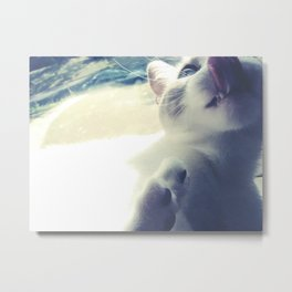 Cat's Tounge Metal Print