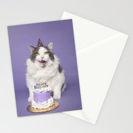 Happy Birthday Fat Cat In Party Hat With Cake Stationery Cards