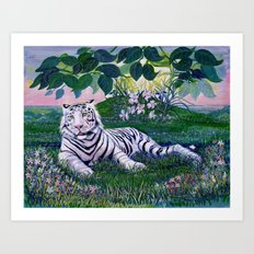 White Siberian Tiger Painting by Catherine Coyle Art Print