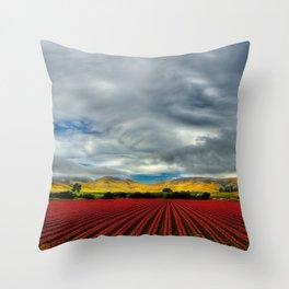 Marigold Field Throw Pillow