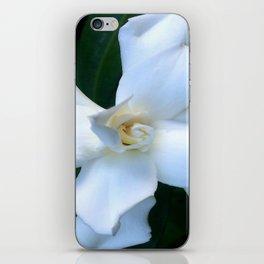 Gardenia iPhone Skin