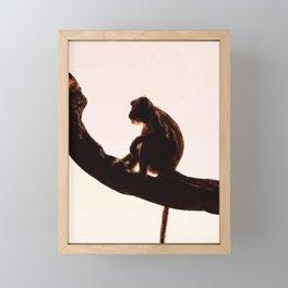 Monkey Framed Mini Art Print