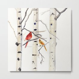 Birch Trees and Cardinal Metal Print