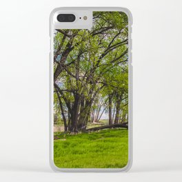 Cottonwoods at Lee's Farm Clear iPhone Case