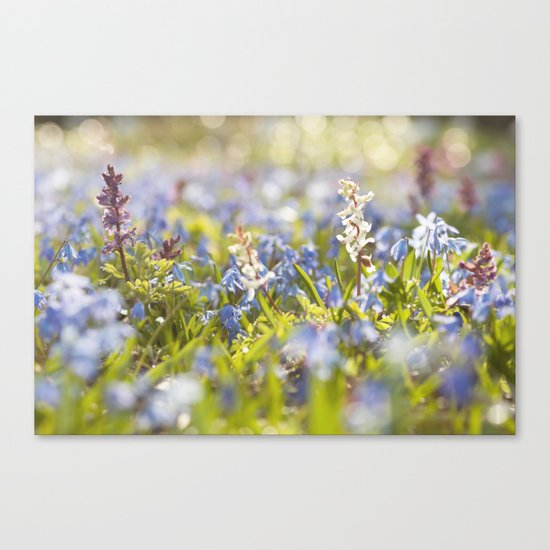 Spring flower meadow - Colorful flowers -floral on #Society6 Canvas Print