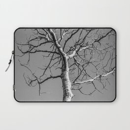 Bare Tree in the sky Laptop Sleeve
