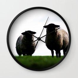 Welsh Sheep Staring Wall Clock