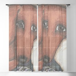 Dachshund on the pillow Sheer Curtain