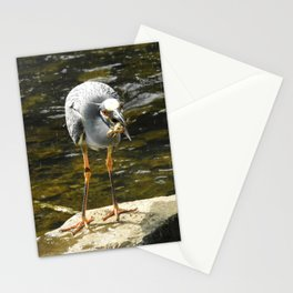 Lunch Time Stationery Cards