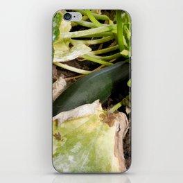 Zucchini in garden iPhone Skin