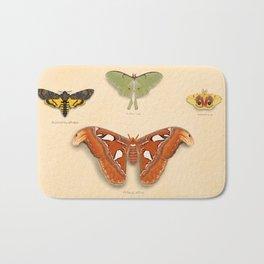 Moths on Display Bath Mat