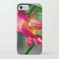 tequila iPhone & iPod Cases featuring Tequila Sunset by Robin Anguiano