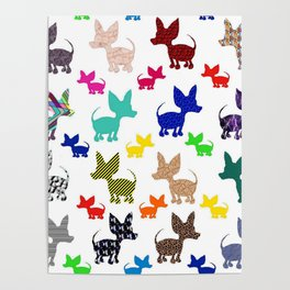 colorful chihuahuas on parade  Poster