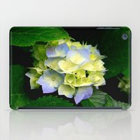 hydrangea iPad Cases featuring Hydrangea  by Chris' Landscape Images & Designs