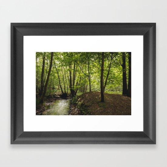 Small woodland stream. Framed Art Print
