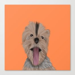 Luna The Yorkie With Her Tongue Hanging Out Canvas Print