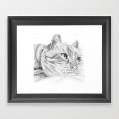 Cat sketch Framed Art Print