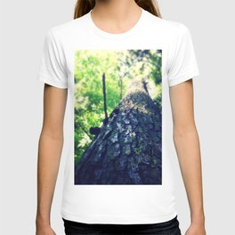 Woodland Perspective T-shirt
