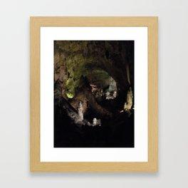 Carlsbad Caverns Framed Art Print