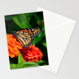 Monarch and the Mum by Teresa Thompson Stationery Cards