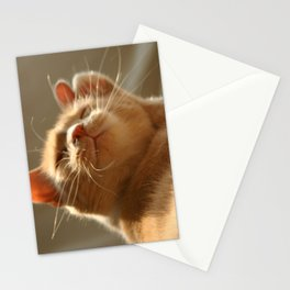 Content Stationery Cards