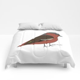 Common Chaffinch Comforters