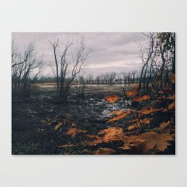 Dyke Marsh Wildlife Preserve Canvas Print
