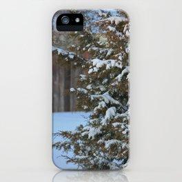 Winter Wonderland in Kansas iPhone Case